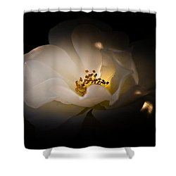 The Light Of Life Shower Curtain by Loriental Photography