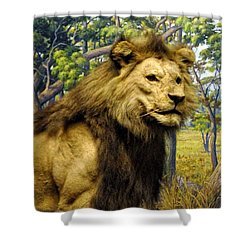 The Lion King Shower Curtain by Bill Cannon