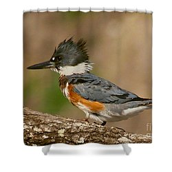 The Little King Shower Curtain