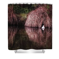 The Little White Duck Shower Curtain by Isabella F Abbie Shores FRSA