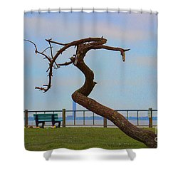 The Lone Tree Shower Curtain by Roberta Byram