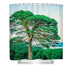 The Loner Shower Curtain