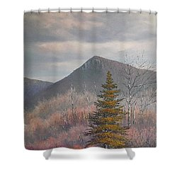 The Lonesome Pine Shower Curtain by Sean Conlon