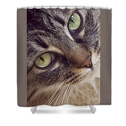 The Look Of Love Shower Curtain by Lynn Andrews