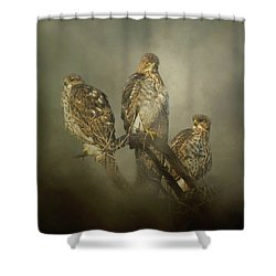 Shower Curtain featuring the digital art The Lookouts by Nicole Wilde