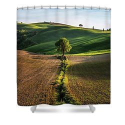 The Lost Love Tree Shower Curtain