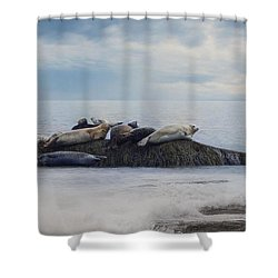 Shower Curtain featuring the photograph The Lounge In by Robin-Lee Vieira