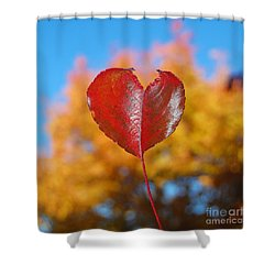 Shower Curtain featuring the photograph The Love Of Fall by Debra Thompson