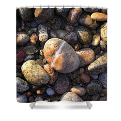 The Lucky Rock Shower Curtain