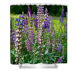The Lupine Crowd Shower Curtain