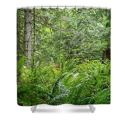 The Lush Forest Shower Curtain