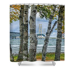 The Mackinaw Bridge By The Straits Of Mackinac In Autumn With Birch Trees Shower Curtain
