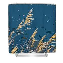 The Madison In Bear Trap Canyon Shower Curtain