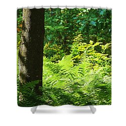 The Magic Of Light Shower Curtain