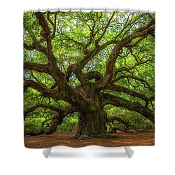 The Magical Angel Oak Tree Panorama  Shower Curtain
