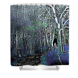 The Magical Woods Shower Curtain