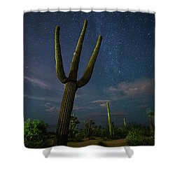Shower Curtain featuring the photograph The Magnificent by Tassanee Angiolillo