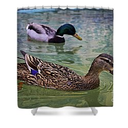 Shower Curtain featuring the photograph The Mallard Pair by Mary Machare