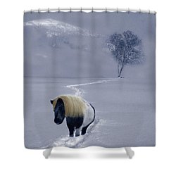 The Mane And The Mountain Shower Curtain by Wayne King