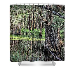 The Mangroves Shower Curtain