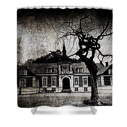The Mansion Shower Curtain by Laura Melis