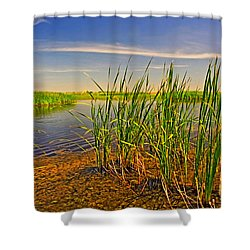 The Marshes Of Brazoria Shower Curtain