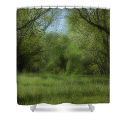 The Meadow Shower Curtain by Ayesha  Lakes