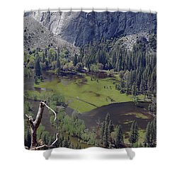 The Meadow From Four Mile Trail Shower Curtain