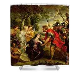 The Meeting Of David And Abigail Shower Curtain by Peter Paul Rubens
