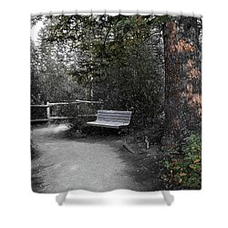 Shower Curtain featuring the digital art The Meeting Place by Stuart Turnbull