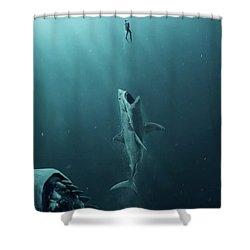The Meg 5.0.3 Shower Curtain