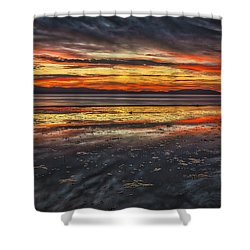 The Melting Pot Shower Curtain by Mitch Shindelbower