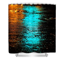 Shower Curtain featuring the photograph The Memory Lane II by Prakash Ghai