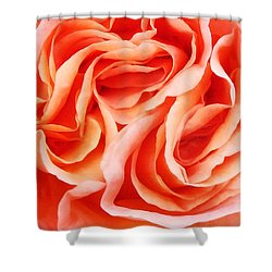 The Menage A Trois Shower Curtain