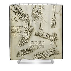 The Metatarsal Shower Curtain by James Christopher Hill