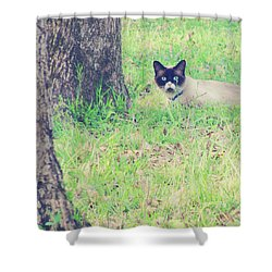 The Mighty Hunter Shower Curtain by Amy Tyler