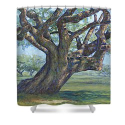 The Mighty Oak Shower Curtain