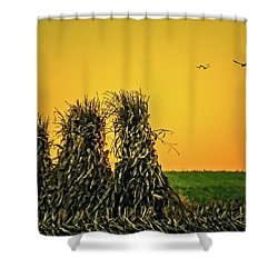 The Migration Of Summer Shower Curtain