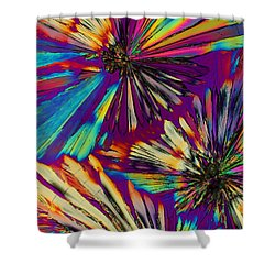 The Mind's Eye Shower Curtain
