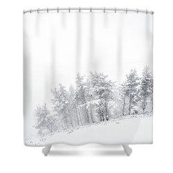 The Minimal Forest Shower Curtain