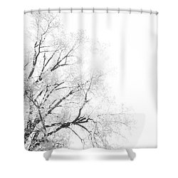 Shower Curtain featuring the photograph The Minimal Tree by Joel Witmeyer