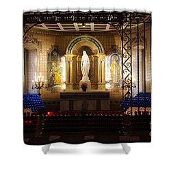 The Miraculous Medal Shrine Shower Curtain