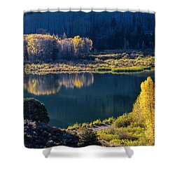 The Mirror In Her Hand Shower Curtain by Alana Thrower