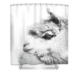 Shower Curtain featuring the photograph The Misty by Robin-Lee Vieira