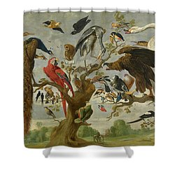 The Mockery Of The Owl Shower Curtain