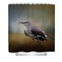 Shower Curtain featuring the photograph The Mockingbird A Bird Of Many Songs by David and Carol Kelly