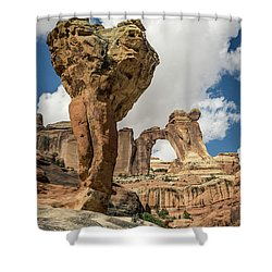 The Molar And Angel Arch Shower Curtain