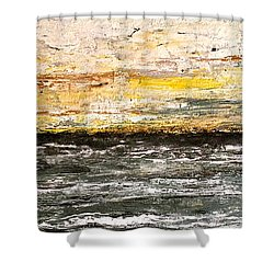 Shower Curtain featuring the painting The Moment 3 by Shabnam Nassir