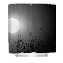 The Moon And The Stars Shower Curtain