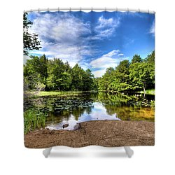 Shower Curtain featuring the photograph The Moose River At Covewood by David Patterson